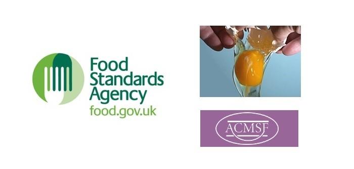 FSA eggs consultation