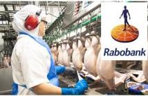 Rabobank image
