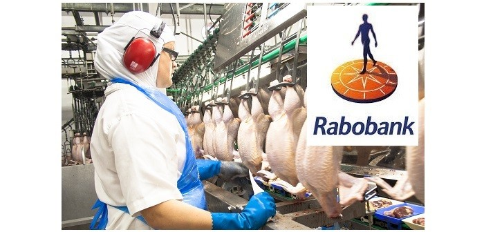 Good recovery prospects forecast for global poultry industry