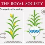 Royal Society GM