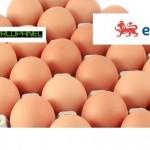 eggs + egg info + Kantar