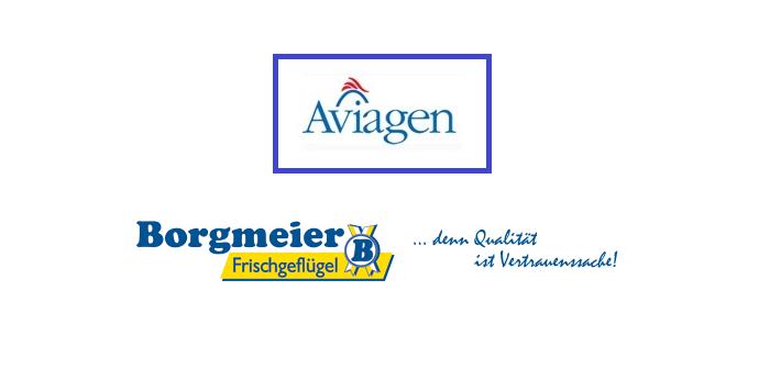 Aviagen + Borgmeier