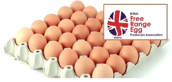 BFREPA + eggs