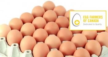 Egg Farmers Canada + eggs