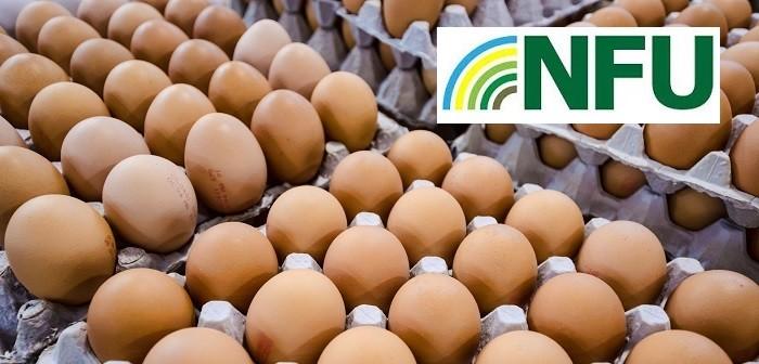 Eggs + NFU