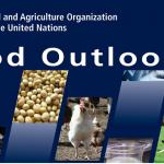 FAO Outlook Jun 2 pic