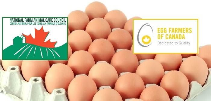 Egg Farmers Canada +NFFAC  eggs