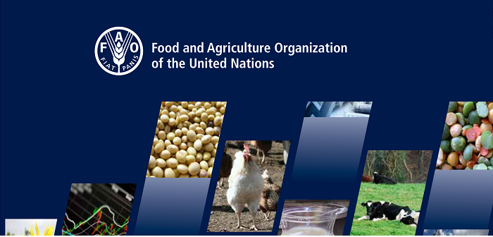 FAO gen image
