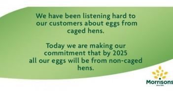 Morrisons eggs