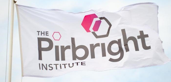 Pirbright flag
