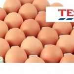 eggs + Tesco