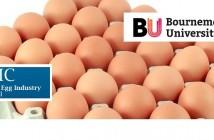 BEIC + eggs + Bournemouth Univ