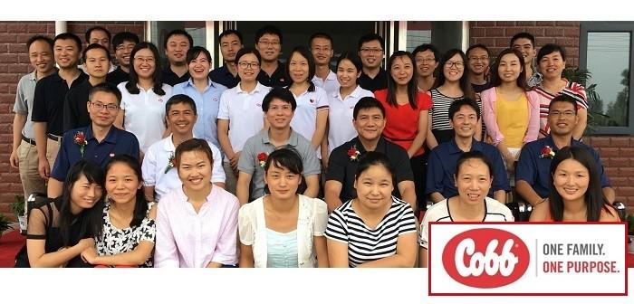 Cobb China Agu 15