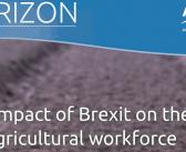 Stark warning of post-Brexit labour risks for UK farming