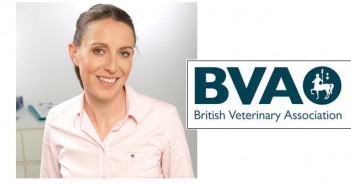 British Veterinary Association calls for clarity over 'settled status' for EU vets in UK