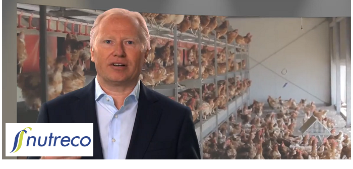 Nutreco CEO Knut Nesse