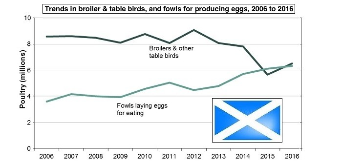 Scots census poultry Oct 25