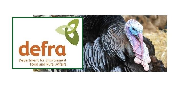 Hungary AI turkey Defra
