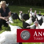 Anglian Turkey Association champ Dec 6