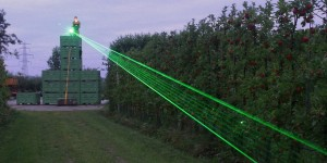 orchard eggs laser