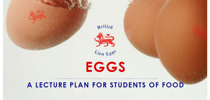 egg lecture plan