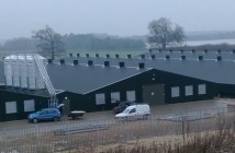 banham sheds