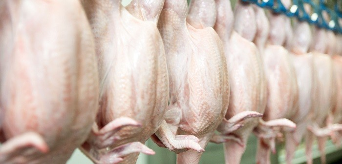 Birmingham Poultry Firm Fined 68000 Over Food Hygiene Breaches