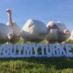 buymyturkey