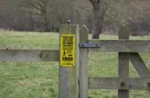 livestock worrying