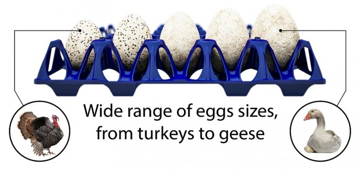 Twinpack egg tray