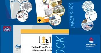 PS handbook illustration