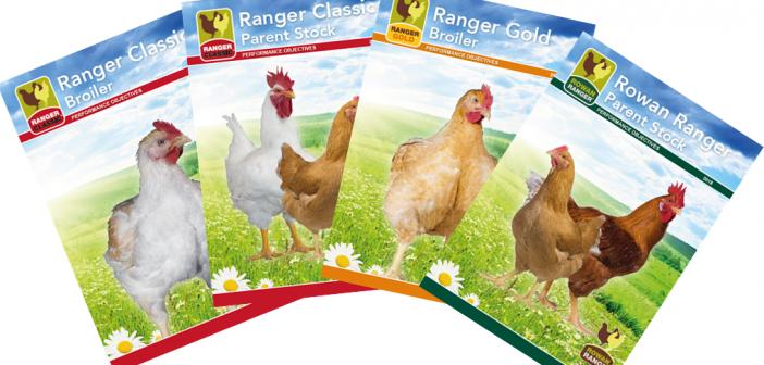 rowan ranger guides