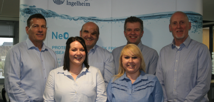 boehringer new avian team