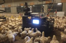 Robot patrolling Week 3 Lower farm Trial IM1.2