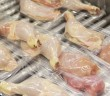 Poultry_Rollstock_ChickenLegs_SemiRigid_ClrTray_FactoryProduction_EM(3)