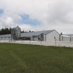 Avian flu feature Biosecure farm