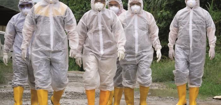 bird flu biosecurity