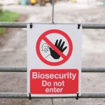 biosecurity bird flu