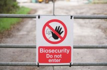 biosecurity bird flu
