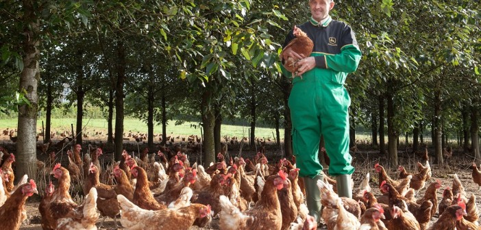 Ready to go cage free?