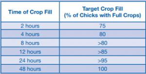 aviagen crop fill pic