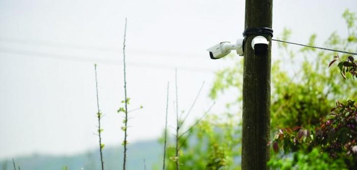 Farm-CCTV
