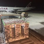 Qatar airplane and pallet