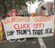 chlorinated chicken trump protest