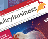 Protected: Poultry Business December 2020