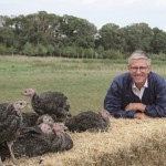 TNP pic 3 - gorton with turkeys
