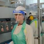 Avara Foods - Hereford image_HR1
