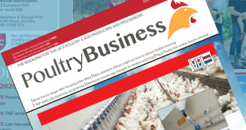 Protected: Poultry Business April 2021