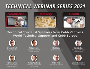 Cobb Webinar Series 2021 graphic with speakers